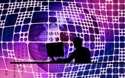 Le boom des Business networks